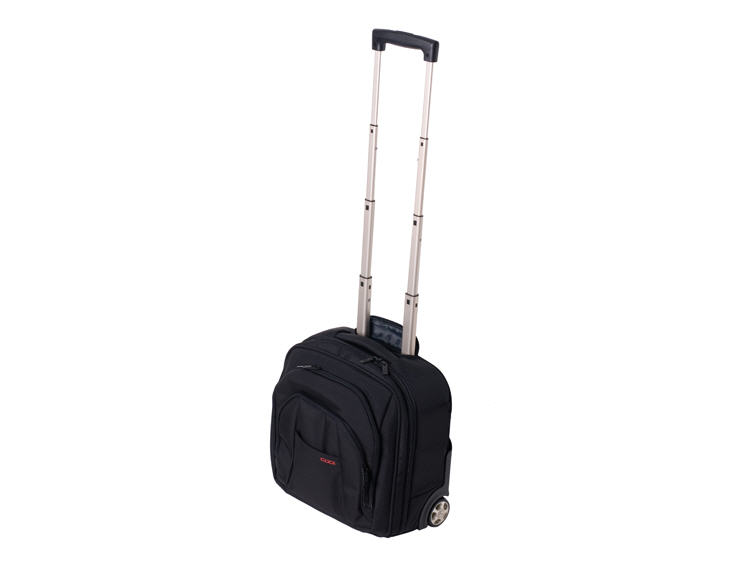 Luggage & Rolling Bags