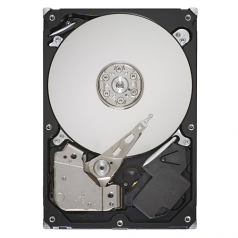 250GB SATA 6Gb/s hard drive - 7200 RPM - With Native Command Queuing (NCQ) and Smart IV technology