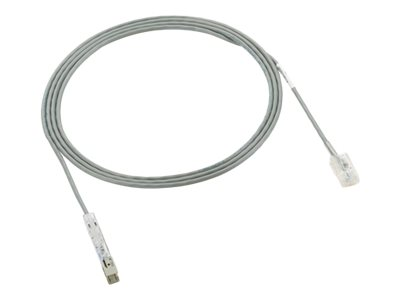 PAN-PUNCH 110 - Patch cable - 110 (M) to RJ-45 (M) - 10 ft - UTP - CAT 3 - stranded - international gray