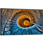 MultiSync - 48 inch Class P Series LED display - with TV tuner - digital signage - 1080p (Full HD) 1920 x 1080 - edge-lit