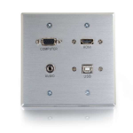 RAPIDRUN HDMI DOUBLE GANG WALL PLATE WITH VGA STEREO AUDIO AND USB-ALUMINUM