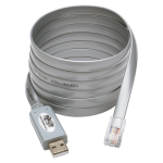 USB to RJ45 Cisco Serial Rollover Cable USB Type-A to RJ45 M/M 6 ft - Serial adapter - USB - gray