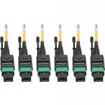 MTP/MPO (APC) Singlemode Slim Trunk Cable 24-Strand 40/100 GbE 40/100GBASE-PLR4 Plenum 6mm Dual Jacket 15 m (49 ft.) - Trunk cable - MTP/MPO single-mode (F) to MTP/MPO single-mode (F) - 15 m - fiber optic - 8.3 / 125 micron - plenum stranded - yell