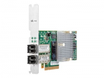 for File Persona - Network adapter - 10Gb Ethernet x 2