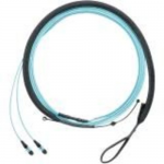 QuickNet PanMPO and MPO Round Harness Cable Assemblies - Network cable - LC single-mode (M) to MPO single-mode (F) - 9.14 m - fiber optic - 9 / 125 micron - OS1/OS2 - plenum - yellow