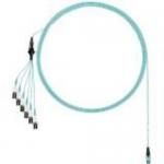 QuickNet - Network cable - PanMPO multi-mode (M) to LC multi-mode (M) - 6.1 m - fiber optic - 50 / 125 micron - OM3 - indoor molded plenum round uniboot - aqua