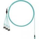 QuickNet - Network cable - PanMPO multi-mode (M) to LC multi-mode (M) - 4.27 m - fiber optic - 50 / 125 micron - OM3 - indoor plenum round uniboot - aqua
