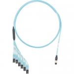 QuickNet - Network cable - MPO multi-mode (M) to LC multi-mode (M) - 3.66 m - fiber optic - 50 / 125 micron - IEEE 802.3ae/OM4 - plenum flat - aqua