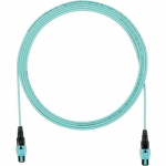 QuickNet PanMPO Round Interconnect Cable Assemblies - Network cable - PanMPO multi-mode (F) to PanMPO multi-mode (F) - 4.27 m - fiber optic - 50 / 125 micron - OM4 - indoor plenum round - aqua