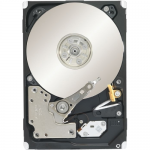 Constellation.2 - Hard drive - 1 TB - internal - 2.5 inch - SAS 6Gb/s - 7200 rpm - buffer: 64 MB